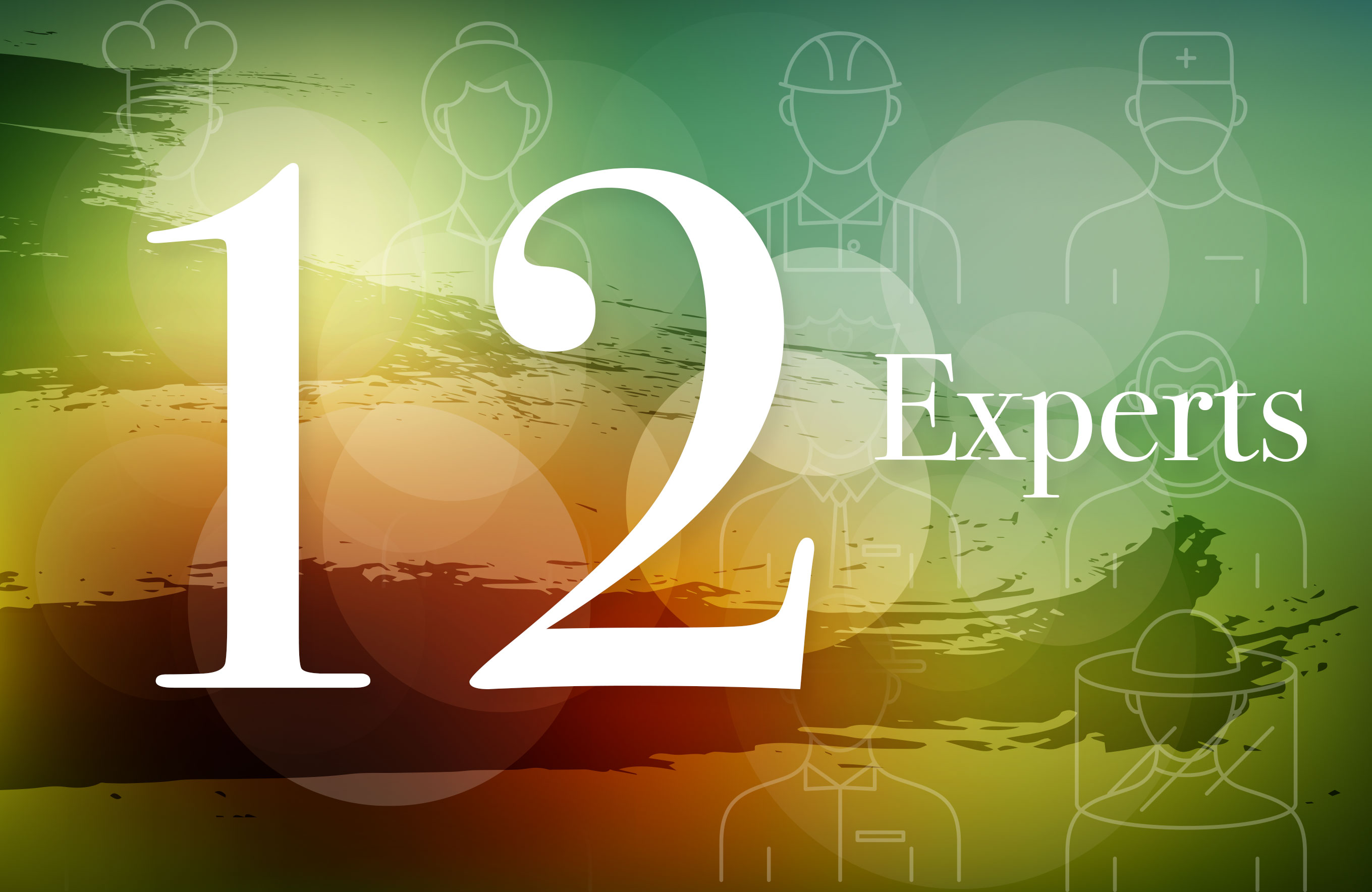 12 Experts